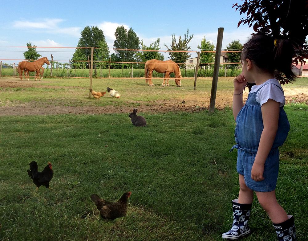 fattoria didattiche per bambini per entrare nel mondo degli animali e vivere a contatto con la natura