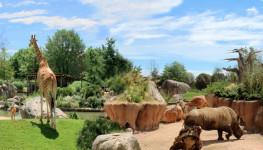 zoom_zoo_bioparco_animali_habitat_natura_bambini
